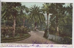 MADEIRA  GARDIM PUBLICO PRECURSEUR 1906 - Madeira