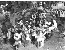 Photo Cameroun. Bakoua Promotion De La Femme Cours De Couture Photo Vivant Univers 1975 - Afrique