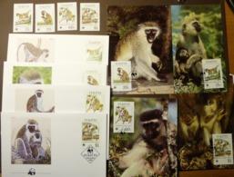 1986 St. Kitts WWF Grüne Meerkatze Green Monkey   Michel 184-187   Maxi Card FDC MNH ** #cover 5007 - W.W.F.