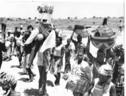 Photo Cameroun. Le Mort Est Porté Par Le Forgeron En Habits Somptueux  Photo Vivant Univers 1975 - Africa