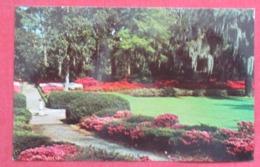 Airlie Gardens   North Carolina > Wilmington Ref 3660 - Wilmington