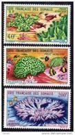 Cote Des Somalis P.A. N° 34/36 XX Faune Corallienne : Millepore, Méandrine, Polypier Rameux  TB - Côte Française Des Somalis (1894-1967)