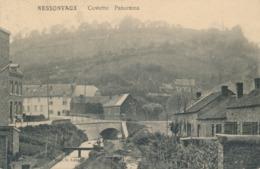 CPA - Belgique - Nessonvaux - Cowette Panorama - Trooz