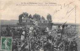 La Vie En Champagne - Les Vendanges - Le Chargement D'un Chariot De 28 Paniers Traîné Par Quatre Forts Boeufs - Non Classés