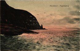 CPA AK NORWAY Nordland - Fuglebjerg (257459) - Norvège