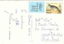 1978 £170 MONACHUS IL MARE DEVE VIVERE SU CARTOLINA FIORI - Umweltschutz Und Klima
