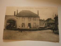 51 Vert La Gravelle, Marais De Saint Gond, La Place. Carte Inédite (troupeau) (A6p59) - Altri Comuni