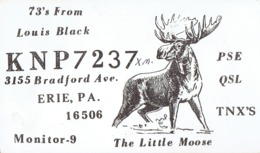 """Erie Pa Very Old QSL From Louis Black, Bradford Avenue """"The Little Moose"""" (1967) - CB"""
