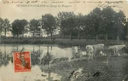 71* SENNECEY LE GRAND  Etang Des Pompiers                  MA95,0907 - France