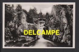 DD / 88 VOSGES / REMIREMONT / LE SAUT DE LA CUVE - Remiremont