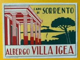 8979 - Vignette Albergo Villa Igea Capo Di Sorrento Italie - Pubblicitari