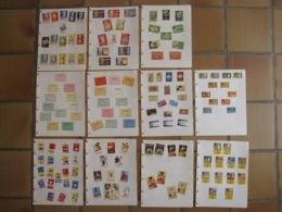 142 étiquettes Boites D'allumettes Safety Matches - Dr. Mann Douleur Tabac Néron Mascotte Ninove Match NORA - Matchbox Labels