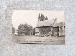 Zepperen  Sint Alcysius En Kasteel Der Boggaerden  1931 - Sint-Truiden