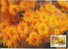 Carte Maximum - Taiwan - Oceanic Creatures - Tubastraea Aurea - Sun Coral - 1945-... Repubblica Di Cina