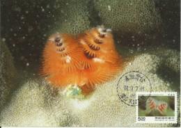 Carte Maximum - Taiwan - Oceanic Creatures - Spirobranchus Giganteus - Christmas Tree Worms - 1945-... Repubblica Di Cina