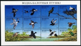 1996Belarus179-190KLDucks And Aquatic-wading Birds8,50 € - Pics & Grimpeurs