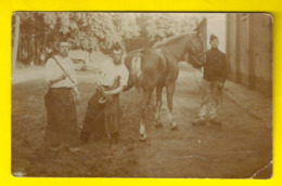 BRASSCHAAT POLYGONE 1904 FOTOKAART SMID PAARD ARTILLERIE MILITAIR CARTE PHOTO FORGERON MILITAIRE Blacksmith Schmied 3499 - Brasschaat