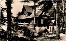 Hotel Waldhaus Wolfsprung, Brunnen (9767) - SZ Schwyz