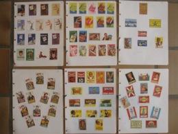 TABAC Cigarettes Sprint Tigra Africaine F6 Semois Welta Darcy De Gaule -88 étiquettes Boites D'allumettes Safety Matches - Matchbox Labels