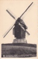 Moulins A Vent Renaix Chat Sauvage - Windmills