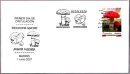 Seta AMANITA MUSCARIA - Mushroom. SPD/FDC Madrid 2007 - Hongos