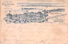 Schloss Wolfsberg - Aussicht Auf Untersee U. Reichenau 1894 AKS - TG Thurgau