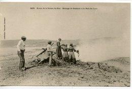 Plogoff. -- Brûlage De Goêmonà La Baie Du Loch - Plogoff