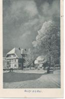 Aldingen  : Hotel Sous La Neige . - Autres