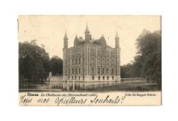 Olsene.  Le Château De Raveschoot (côté) - 1902. - Zulte