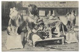 Wilhelm Hagenbeck's Grosse Raubtier-Dressur-Schau Der Erde... Dresseur De Lions... - Cirque