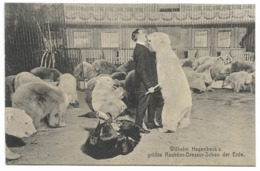 Wilhelm Hagenbeck's Grosse Raubtier-Dressur-Schau Der Erde... Dresseur D'Ours - Cirque