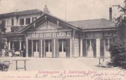 SALSOMAGGIORE (PR) - R. Stabilimento Nuovo - F/P - V: 1908 - ANIMATA - Other Cities