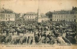 62* ARRAS Marche Aux Vaches                  MA95,0170 - Arras