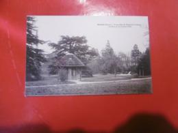 D 27 - Gisors - Propriété De Madame Champy - Le Parc Et La Chute D'eau ( Colle Sur La Carte) - Gisors