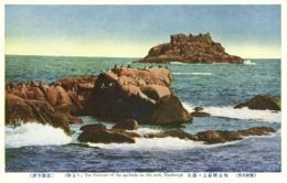 North Korea Coree, UMIKONGO, Sea-Birds On The Rocks Of Umi-kongo (1910s) Postcard - Korea, North