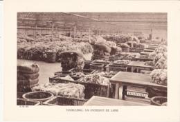 Grande Photo (Phototypie, Héliogravure) - F.M. 108 /  TOURCOING : UN ENTREPOT DE LAINE - Foto