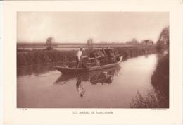 Grande Photo (Phototypie, Héliogravure) - F.M. 80 /  LES MARAIS DE SAINT-OMER / Barque, Cheval - Cliché DEFFONTAINES - Photos