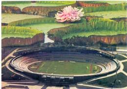Postcard Stadium Manaus Brasil Vivaldo Lima Stadion Stadio - Estadio - Stade - Sports - Football  Soccer - Football