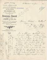 LA THIBAUDIERE PRES SAINT PIERRE D OLERON RIVASSEAU CHOCARD CULTURE DE VIGNE AMERICAINES BOIS POUR GREFFAGES ANNEE 1926 - Frankreich