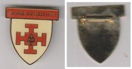Scoutisme Insigne Metallique émaillée.SCHREWSBURY. - Pin's