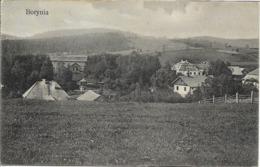 1910 - BORYNIA  Oblast LEMBERG, Gute Zustand, 2 Scan - Ukraine