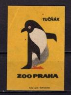 Tschechisches Zuendholzschachteletikett, Pinguin (80316) - Zündholzschachteletiketten
