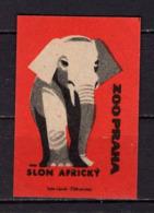 Tschechisches Zuendholzschachteletikett, Elefant (80319) - Zündholzschachteletiketten