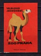 Tschechisches Zuendholzschachteletikett, Kamel (80320) - Zündholzschachteletiketten