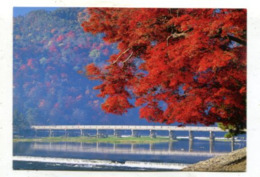 JAPAN - AK 361833 Kyoto - Togetsuklyo Bridge - Kyoto