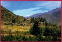 CPM Asia Bhoutan BHUTAN : Drugyel Dzong - Butan