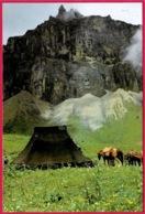 CPM Asia Bhoutan BHUTAN : Rocky Mountain Of Bongtoila - Butan