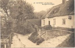 Boitsfort NA43: Un Vieux Coin, Montagne De La Cigale - Watermael-Boitsfort - Watermaal-Bosvoorde