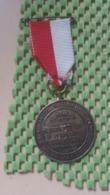 Medaille :Netherlands  - 5-10-20 Km. -R.K - W.s.v Wando'Dors Oosterhout  -   Medal - Walking Association - Nederland