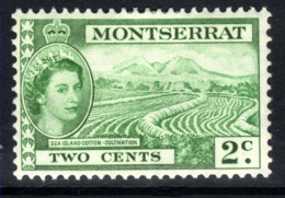 Montserrat 1953 QE2 2ct Green Sea Island Cotton MM SG 138 ( C792 ) - Montserrat